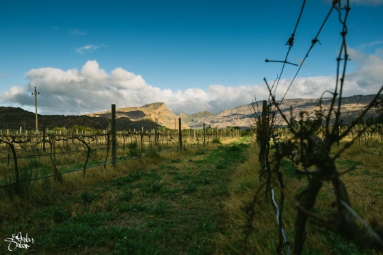 Rocklands_South Africa-43